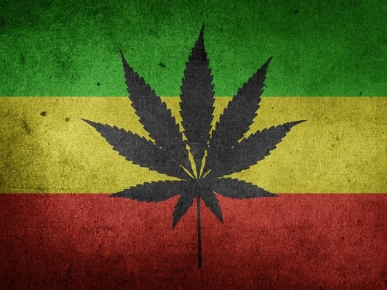 7 Health Benefits of Cannabis for African Americans